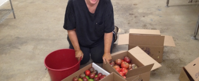 Sandy Vivian sorting tomatoes for food pantries