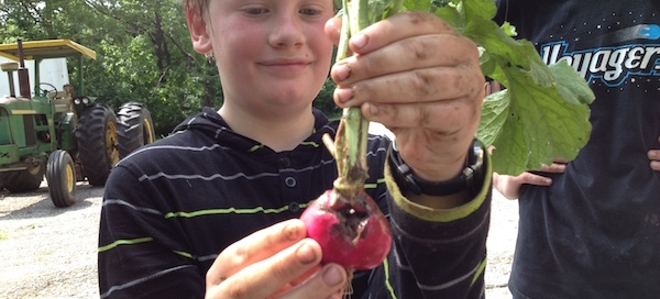 Boy with radish