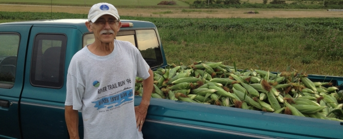 Bill Conway, gleaning corn, field supervisor