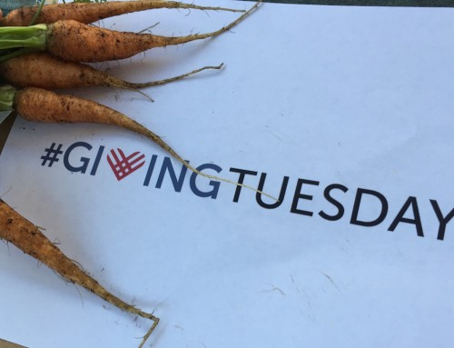 All it takes is a little help from our friends…on Giving Tuesday