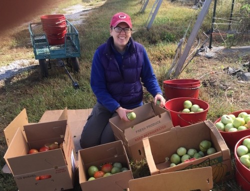 Gratitude and choices with After the Harvest