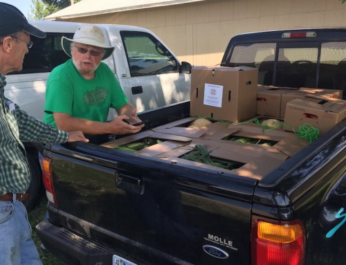 Produce rescue drivers hit the gas and deliver nutritious food to those in need