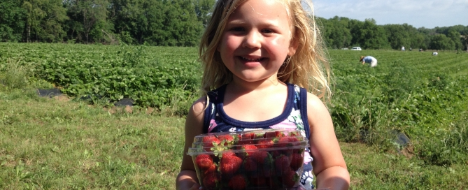 Little girl, strawberries