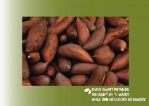 postcards-vistaprint-final-potatoes