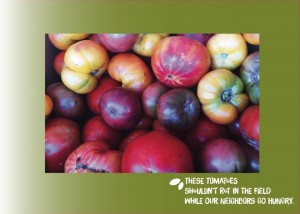 postcards-vistaprint-final-tomatoes