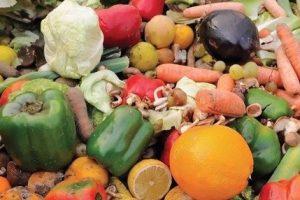City Market Farmers Market Education Station:  Produce waste @ City Market Farmers Market