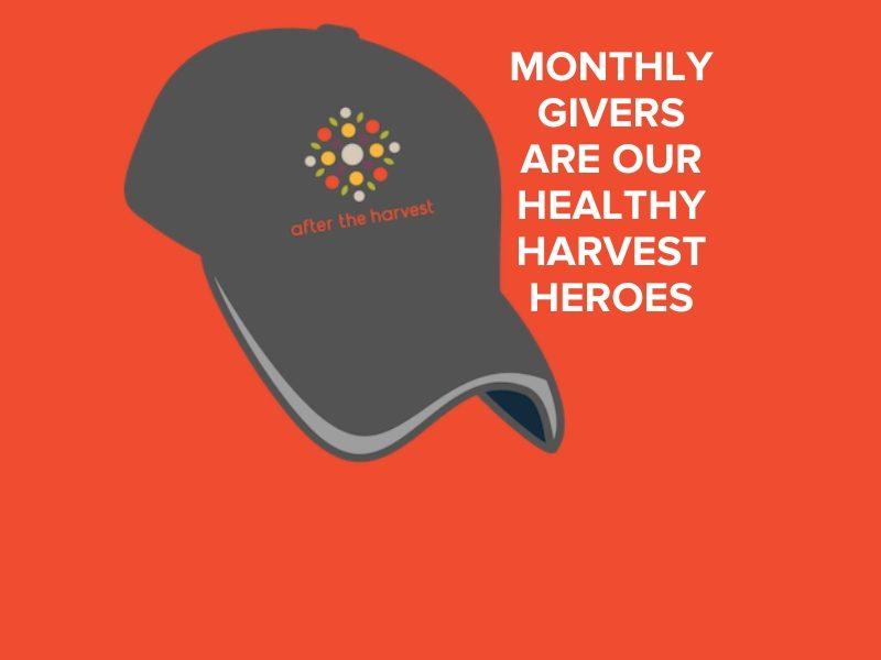 Healthy Harvest Hero hat